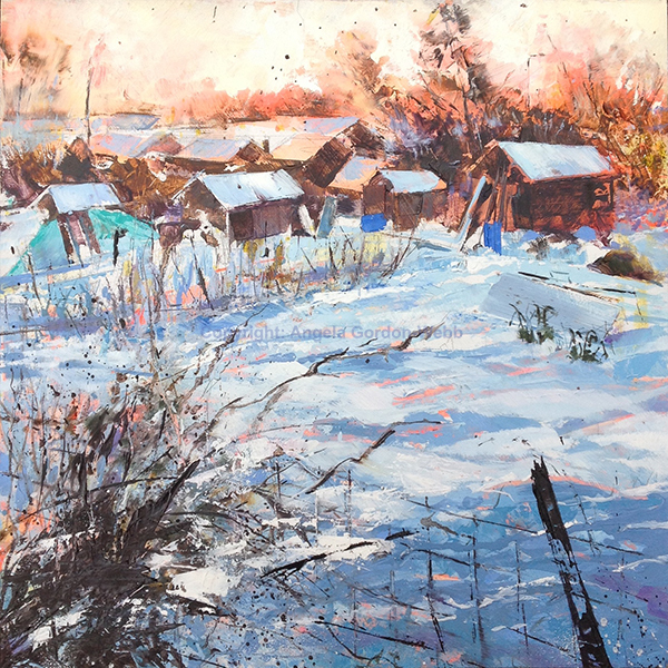 Allotments in the snow 1