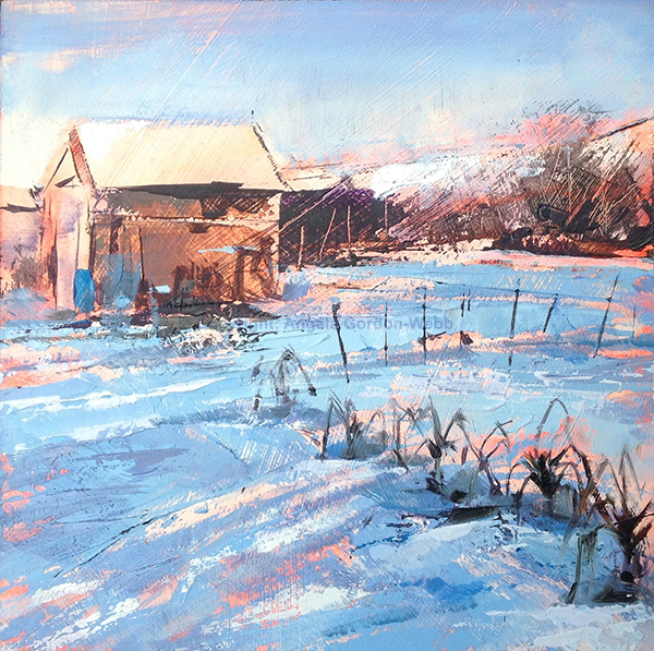 Allotments in the snow 3