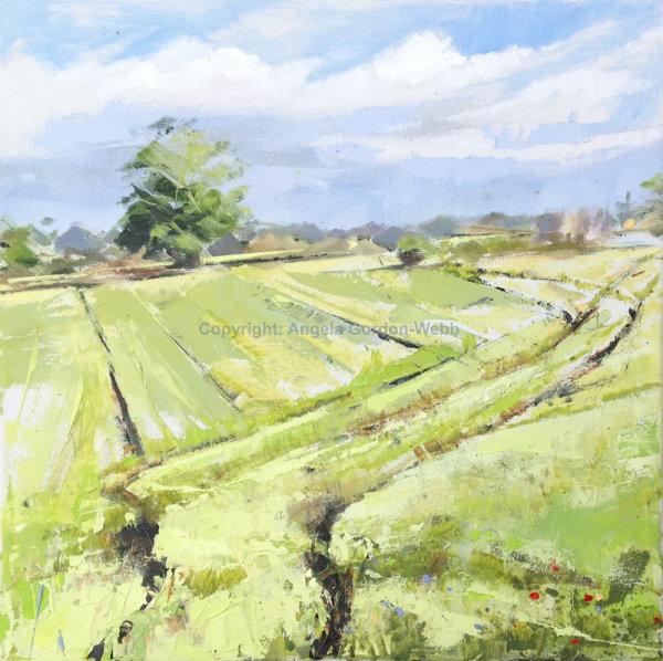 Spring Tracks, Warwickshire