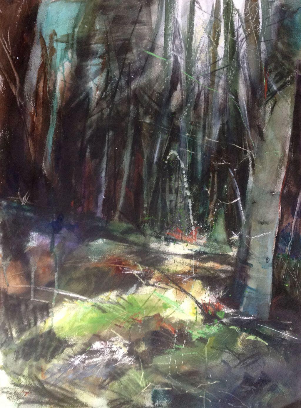 Birch Woodland 2
