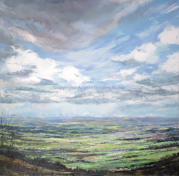 Sea of fields, from the Clee, Shropshire