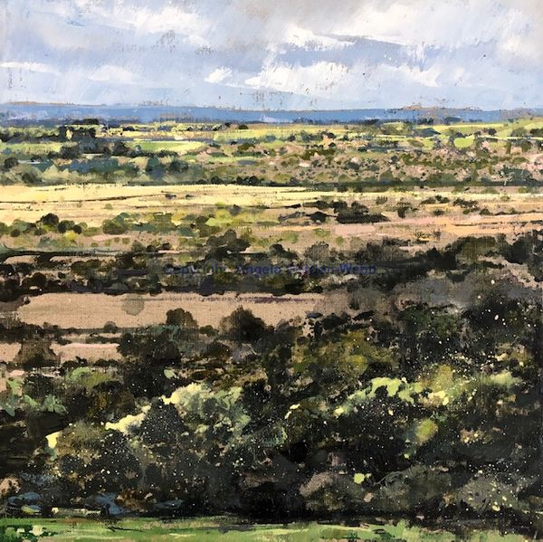 view from Edgehill, Kineton, Warwickshire, oil on linen painting