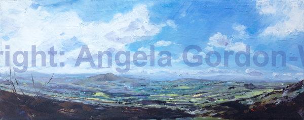 Shropshire Panorama