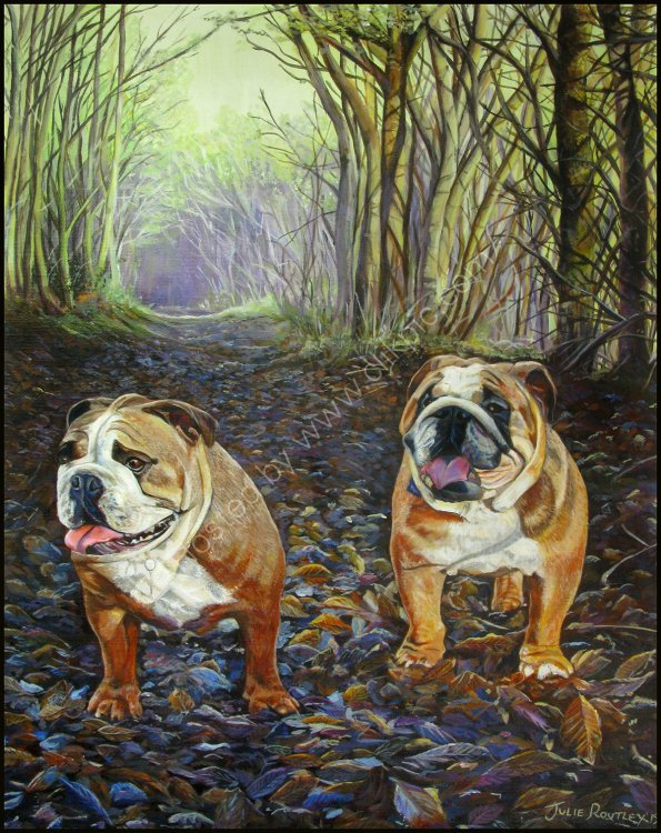 'Bulldogs'