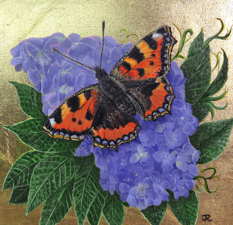 'Tortoiseshell Butterfly'