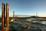 St Mary's Lighthouse at sunrise