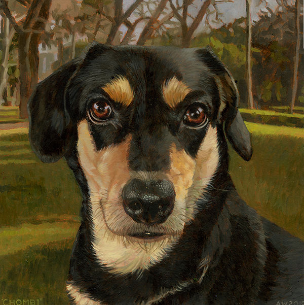 A portrait of a brown and black dog on a park background