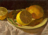Available Still Life Paintings