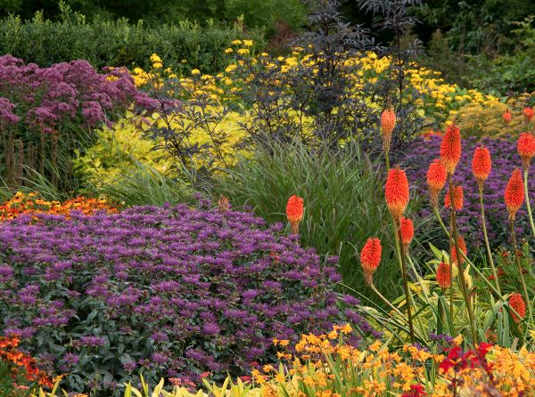 Brian Grimwood - The Hot Garden