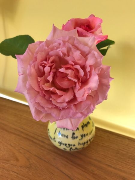 Jill Howell - I Grew this Beautifully Scented Rose