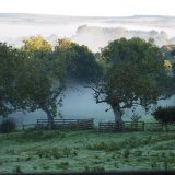 Morning mist along the River Arun floodplain