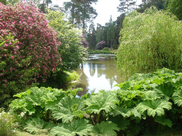 Peter Dunlop - Leonardslee Gardens