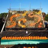 Slindon pumpkin display