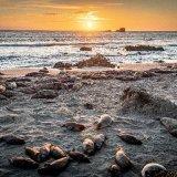 Sunset at Elephant Seal Outlook, San Simeon