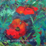 cornish poppies original mixed media flower painting