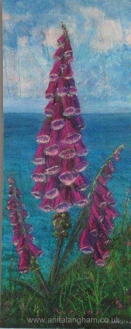 foxgloves on the cornish cliffs original mixed media painting