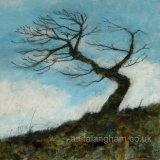 minster tree