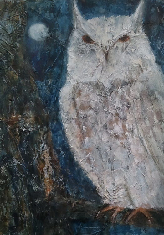 owl in moonlight print for sale