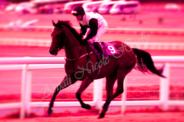 EPSOM LIVE COLOURS - IN REDS