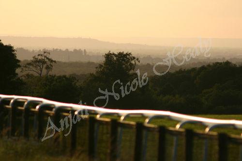 Epsom Racetrack on a Summer's Evening