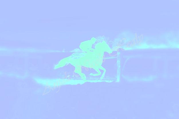 GALLOPS - AQUA ON BLUE