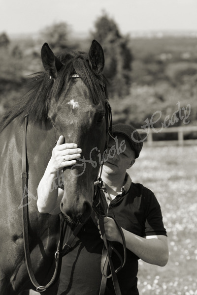 LEE CARTER - OLD YARD, CLEAR HEIGHT STABLES