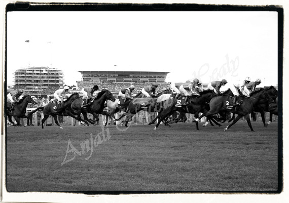 The Derby Race & The Queen's Horse