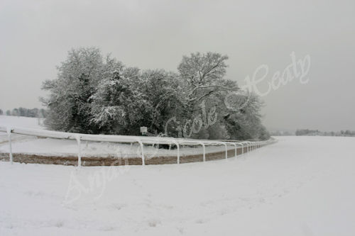 End of Gallops