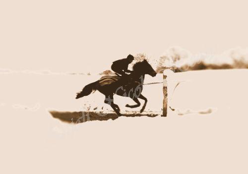 Gallops - brown & beige