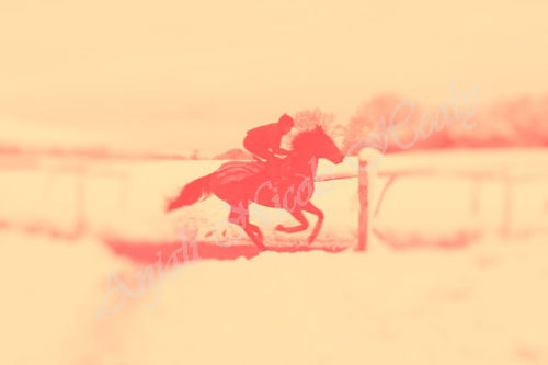 Gallops - red on yellow