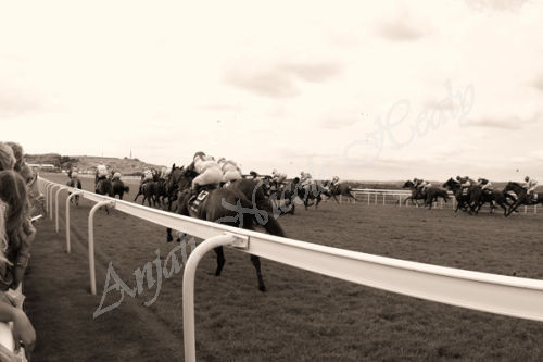 Glorious Goodwood The Stewards' Cup 28 Horse Charge