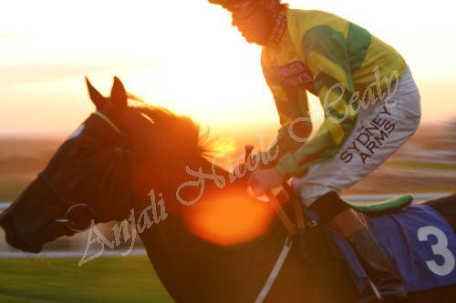 Golden Sunset on the Last Race