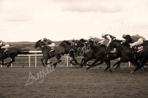 Goodwood Race for a Place