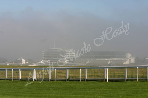 Grandstands in the Mist