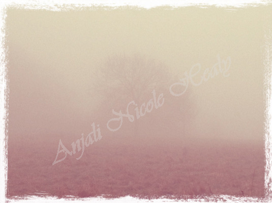 Tree in the Mists