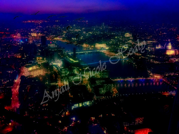 London Lights & Flight of Birds