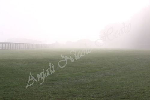 Racecourse in the Morning Mist