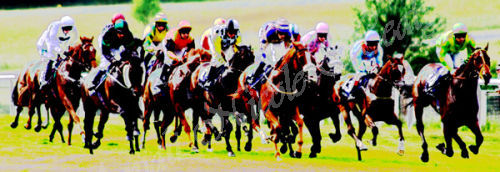 DERBY DAY RACING IN 3D