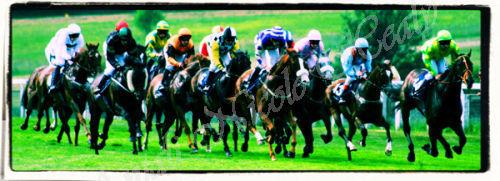 Racing in Frame