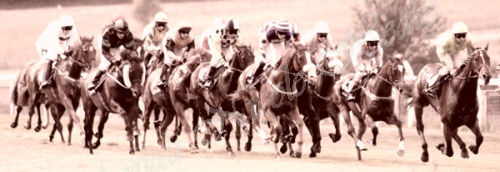 Racing in Pastels