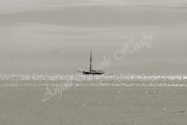 Sailing in Tenby