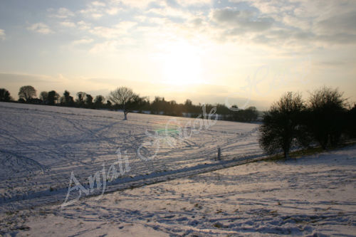 Snow Slopes