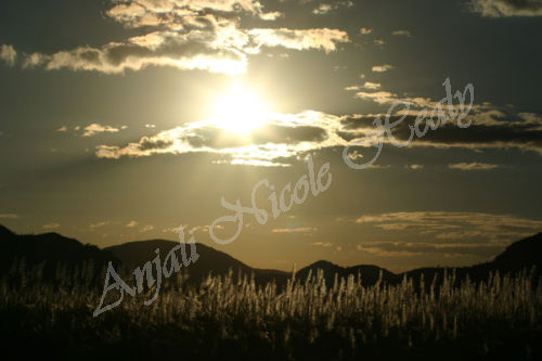 Sugar Cane & The Mountains of Kruger National Park