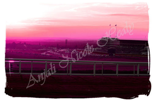 Sunset over The Epsom Downs Racecourse - in fusia
