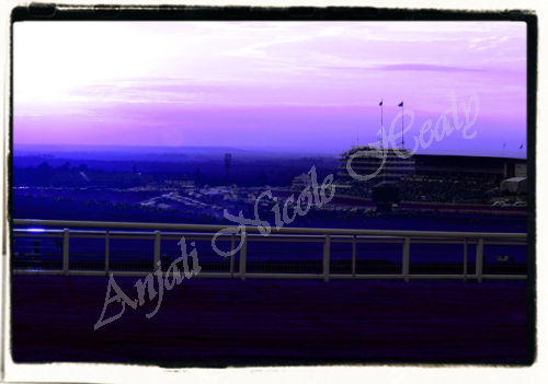 Sunset over The Epsom Downs Racecourse - in hues of purple
