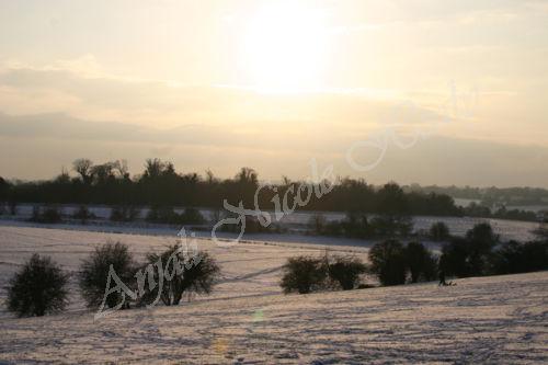 Winter Sunset over Epsom Downs