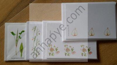 Arum, Fritillaria, Hellebore, Pear
