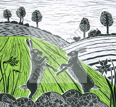 Hares in the Spring
