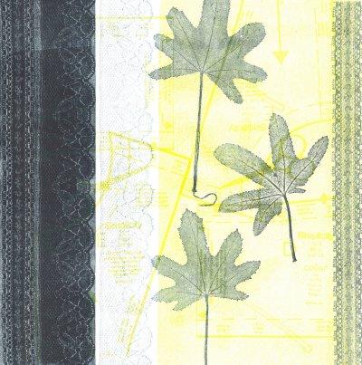 Lace and Leaves 1 Monoprint 30 cm x 30 cm