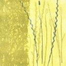 Tangled Grasses